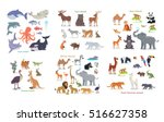 ocean forest asian australian... | Shutterstock .eps vector #516627358