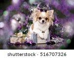 Chihuahua Hua Dog And Christma...