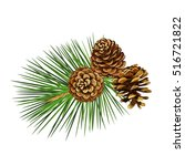 Vector Illustration. Pine Tree...