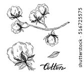 vector set of hand draw ink... | Shutterstock .eps vector #516725575
