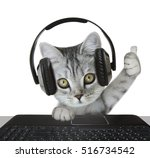 cat wearing headphones | Shutterstock . vector #516734542