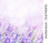 Unfocused Blur Summer...