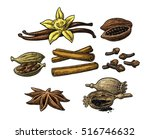 set of spices. anise star ... | Shutterstock .eps vector #516746632
