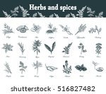herbs and spices set. hand... | Shutterstock .eps vector #516827482