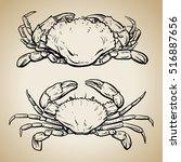 Crab Drawing On Vintage...