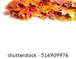 autumn leaves studio. autumn... | Shutterstock . vector #516909976
