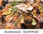 Basket With Dry Autumn Leaves ...