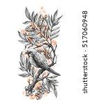 color illustration of the bird...   Shutterstock . vector #517060948