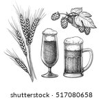 Hops  Malt  Beer Glass And Beer ...
