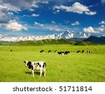 Landscape With Grazing Calves