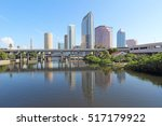 Partial Tampa, Florida skyline with USF Park and commercial buildings