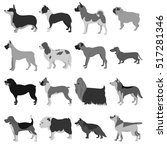 set of dog breeds | Shutterstock . vector #517281346