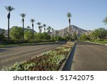 rows of palm trees  mountains ...   Shutterstock . vector #51742075