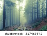 fog in the haunted green forest ... | Shutterstock . vector #517469542