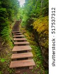staircase on a trail in the... | Shutterstock . vector #517537312