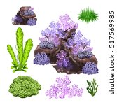 the set of algae  corals and... | Shutterstock .eps vector #517569985