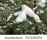 the snow on the spruce tree in... | Shutterstock . vector #517635376