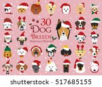 Set Of 30 Dog Breeds With...