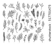 hand drawn vector winter... | Shutterstock .eps vector #517701475