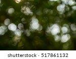 natural green blurred bokeh... | Shutterstock . vector #517861132