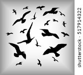 Vector Silhouettes Of Sea Gull...