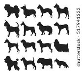 Stock vector collection of dogs silhouette 517941322