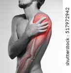 human arm pain. anatomy of the... | Shutterstock . vector #517972942
