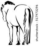 rump of a horse. raster clip... | Shutterstock . vector #517973296