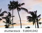 Palm Tree Over Tropical Beach ...