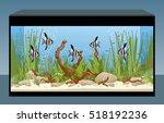 Aquarium. Natural Aquarium Wit...