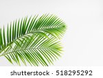 green leaves palm isolated on... | Shutterstock . vector #518295292