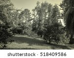 the natural landscape park in... | Shutterstock . vector #518409586