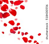 Red Rose Falling Petals Agains...