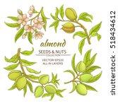 almond vector set | Shutterstock .eps vector #518434612