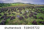 turf fuel being harvested on a... | Shutterstock . vector #518435722