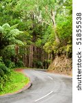 Winding road through a rainforest, New Zealand - stock photo