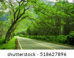 beautiful road in the ... | Shutterstock . vector #518627896