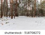 landscape of winter pine forest ... | Shutterstock . vector #518708272