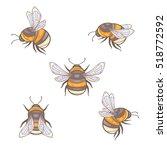 set of vector bumblebees ...