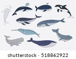 sea whale vector color set | Shutterstock .eps vector #518862922