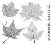set leaves maple of black on... | Shutterstock .eps vector #518871712