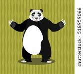 Panda Chinese Bear. Good Anima...