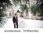 wedding winter  bride and groom ... | Shutterstock . vector #519061462