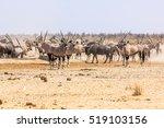 wildlife animals: zebras wildebeests oryxs at water pool in Namibian savannah of Etosha National Park, Namibia, Africa