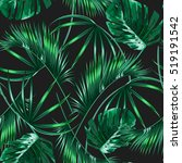tropical palm leaves  jungle... | Shutterstock .eps vector #519191542