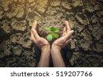 hands holding tree growing on... | Shutterstock . vector #519207766