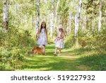 two girls girlfriend walking in ... | Shutterstock . vector #519227932