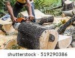 Professional Chainsaw Cutting...
