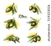 6 olive sketch branches... | Shutterstock .eps vector #519323026