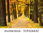 Beautiful Autumn Park In A...